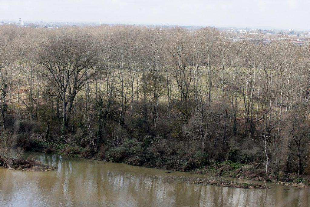 Le terrain est totalement caché au milieu des arbres. Mais quand les feuilles tombent à l'automne, on peut l'entrapercevoir depuis les bords de Garonne... 23 février 2011, Toulouse-France. © Frédéric Scheiber