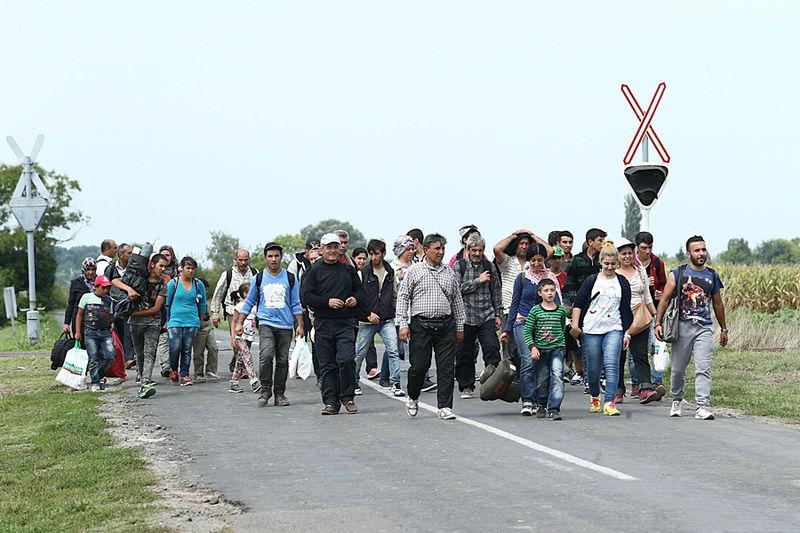Migrants sur la route en Hongrie (photo : Gémes Sándor/SzomSzed)