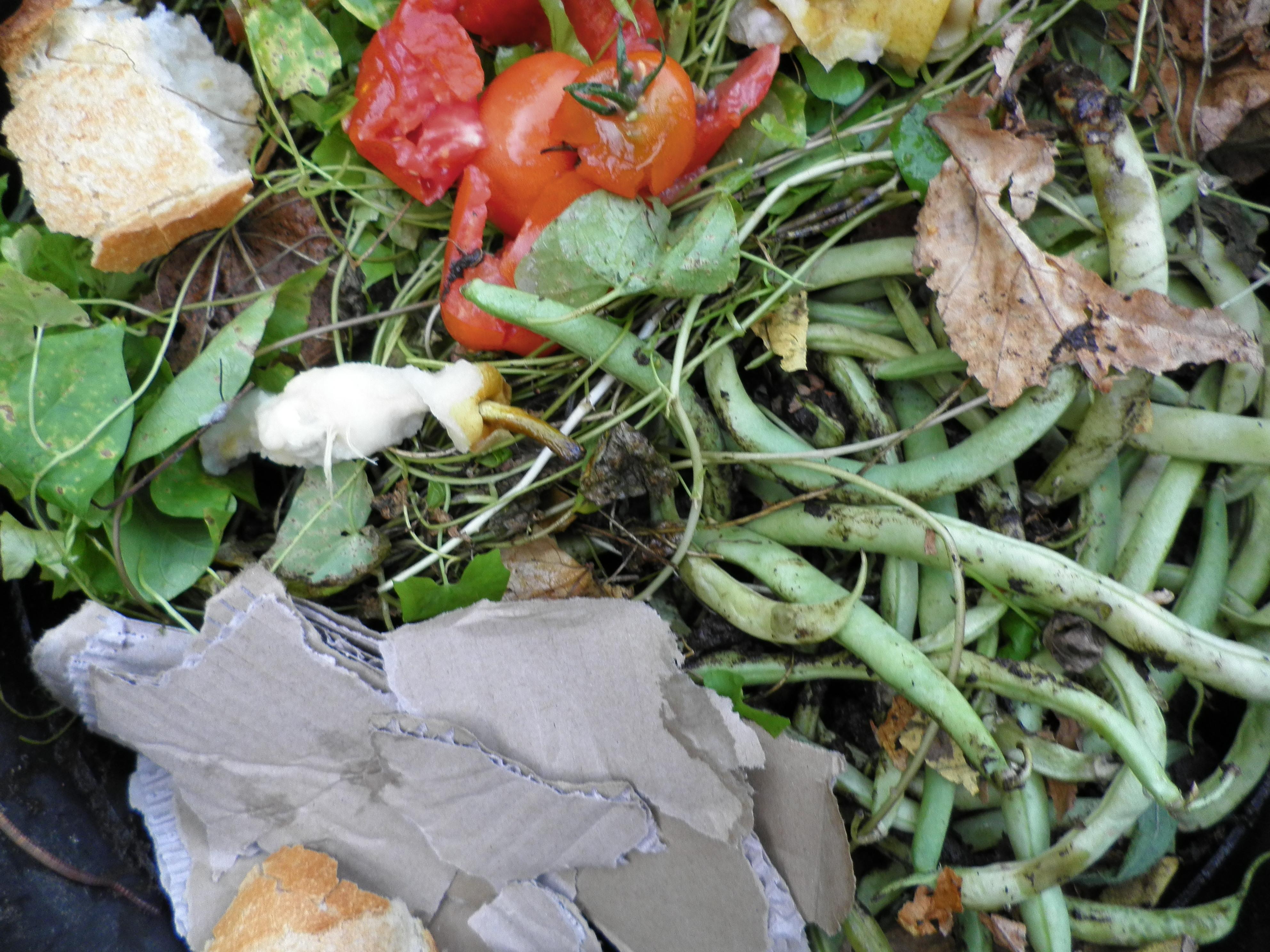 Déchets organiques