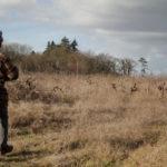Joe Landron sur une friche du Muscadet