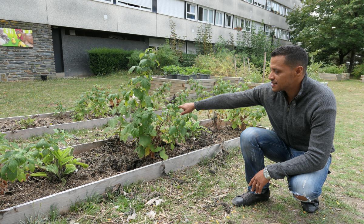 Abdel Zibar une