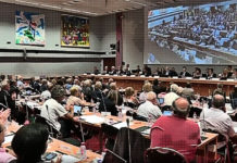 Séance du conseil métropolitain de la MEL, le 15 juin 2018. Capture d'écran France 3