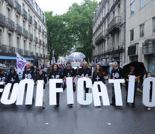Manif_reunification_Nantes_Bretagne