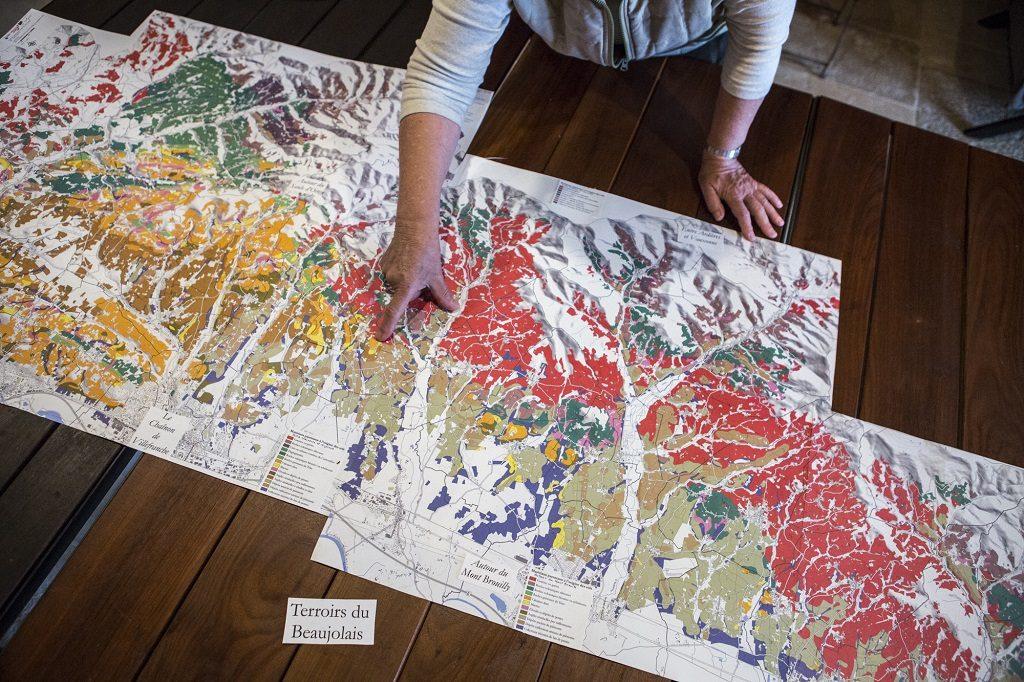 Carte géologique du terroirs du Beaujolais. Blacé, France, 26.10.2018