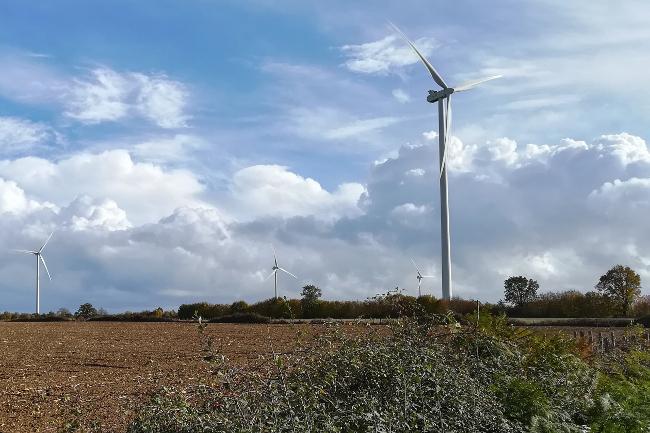 Les champs, aux pieds des éoliennes des Quatre-seigneurs