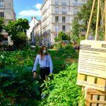 Nantes Paysages Nourriciers_square Louis Bureau_Museum © Ville de Nantes – Stephan Menoret