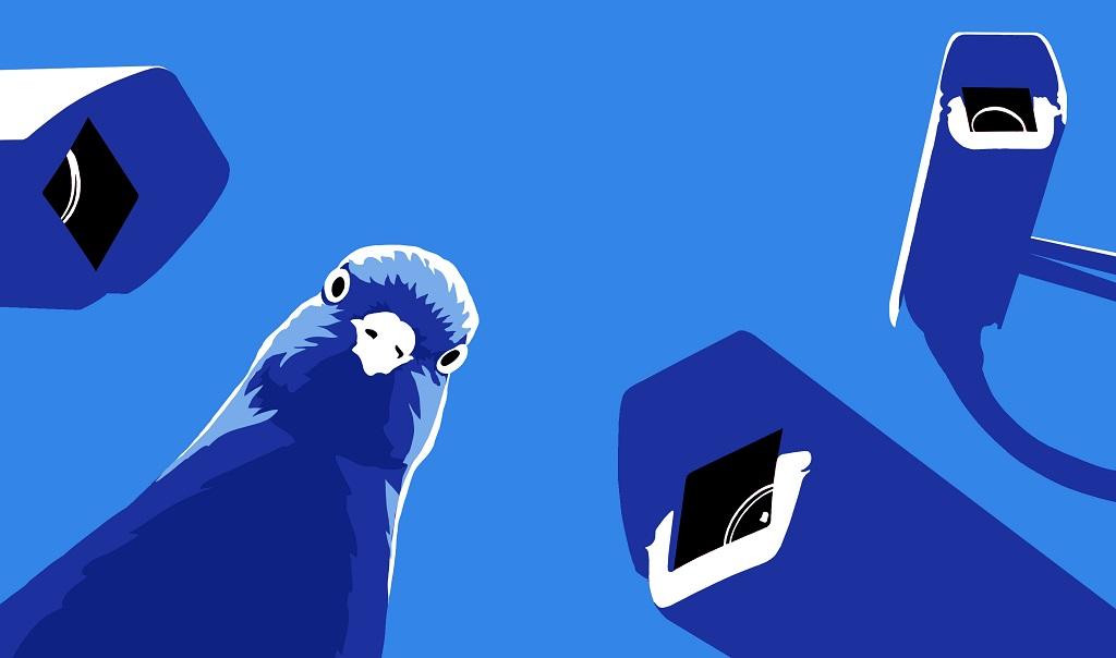 video surveillance bleu