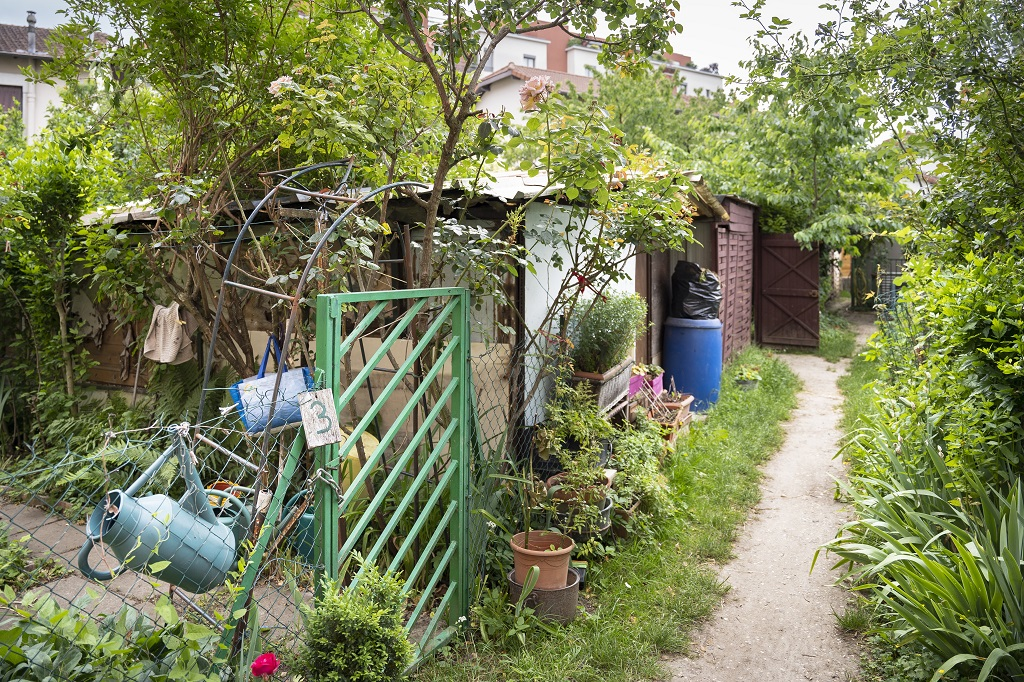 Jardins partagés Flachet